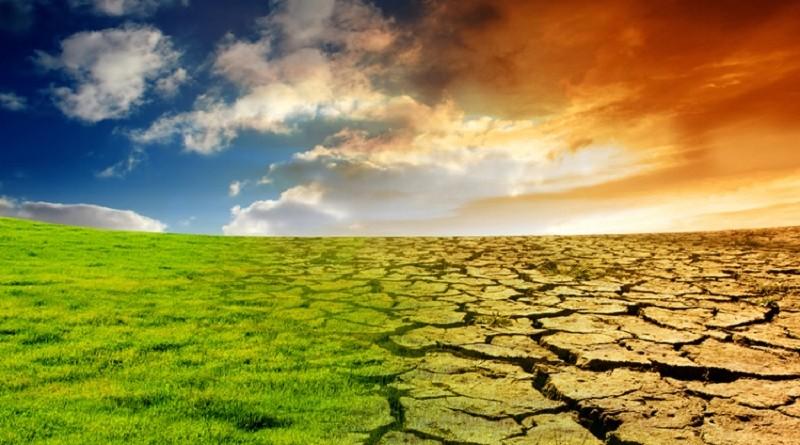 В чём причины экологических катастроф - глобальное потепление или человеческий фактор?