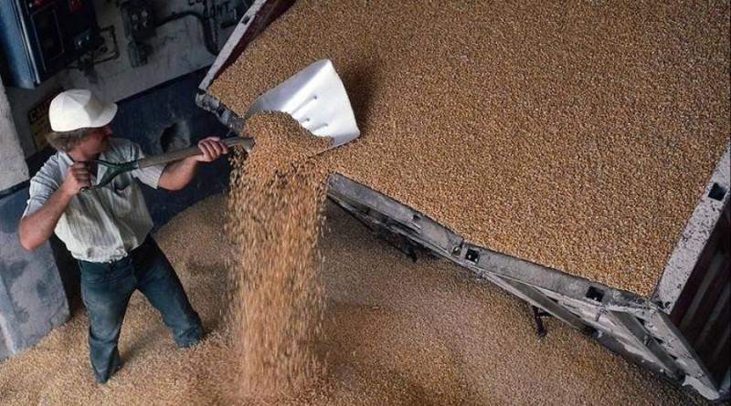Покупка зерносушилок и зерноочистительных машин в Украине