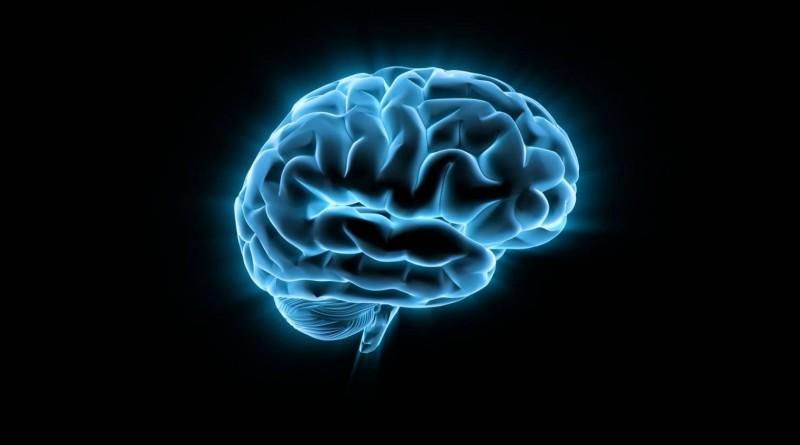 Как над нашим мозгом издеваются всю жизнь накачивая его всякой вредной информацией
