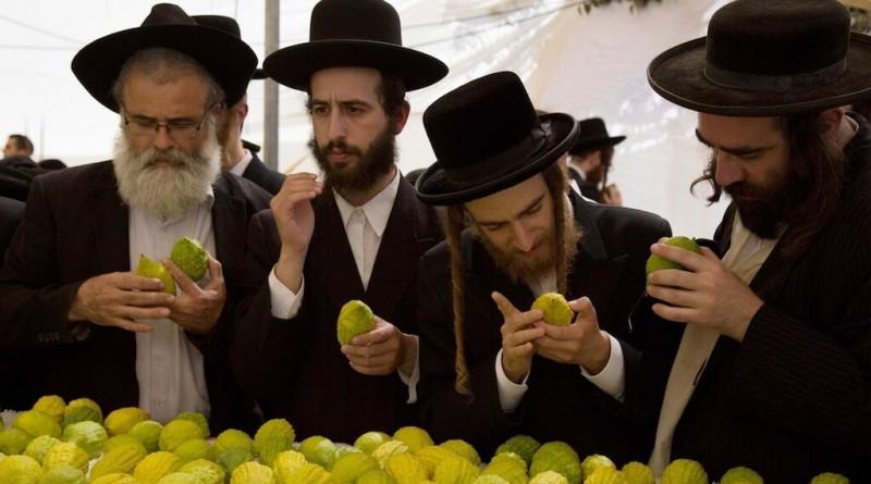 В чём состоит Иудейский план нового обмана России