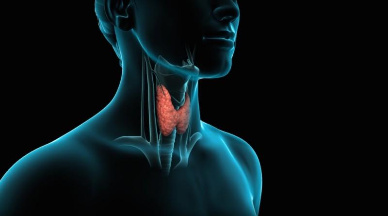 Заболевание щитовидной железы - эти признаки помогут определить, проверьте себя