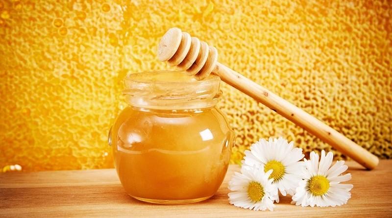Почему человеку полезно есть мед каждый день