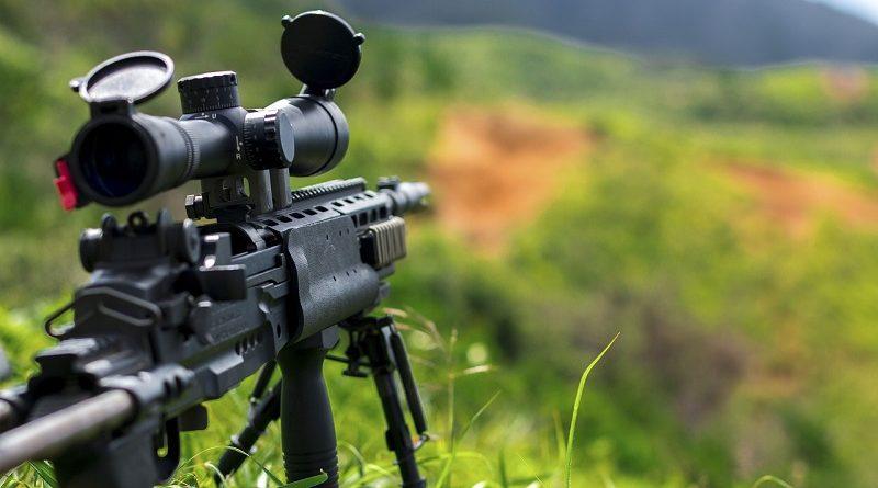 Задача на внимательность. Необходимо найти отлично замаскированного снайпера