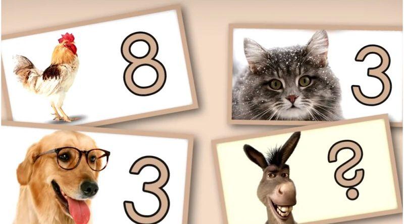 Коварная головоломка про животных - решают правильно 20%