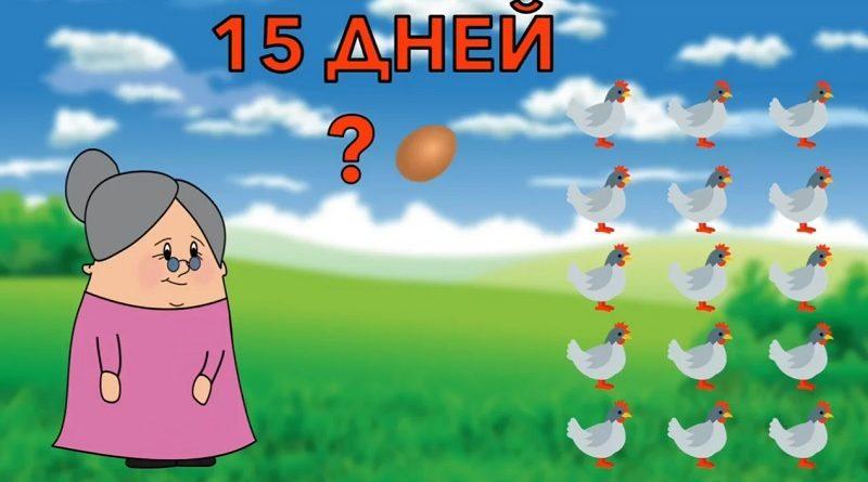 Коварная загадка про куриц и яйца - 70% не справляются